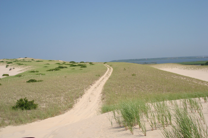 7. And of course, a solitary walk along the Provincetown dunes will do a lot for your sense of inner tranquility.