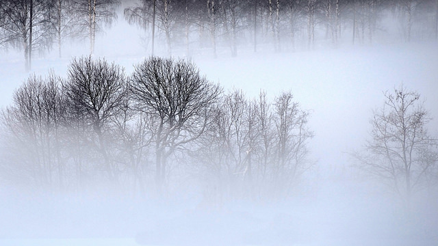 7. Blue Mist Road