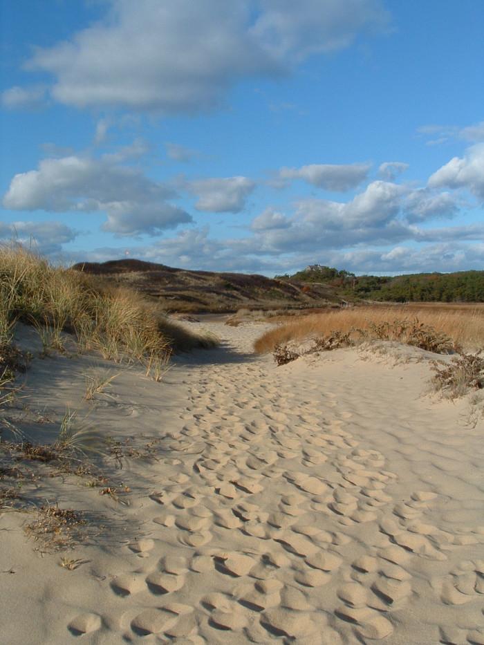 1. Great Island Trail, Wellfleet. 3-6 miles.