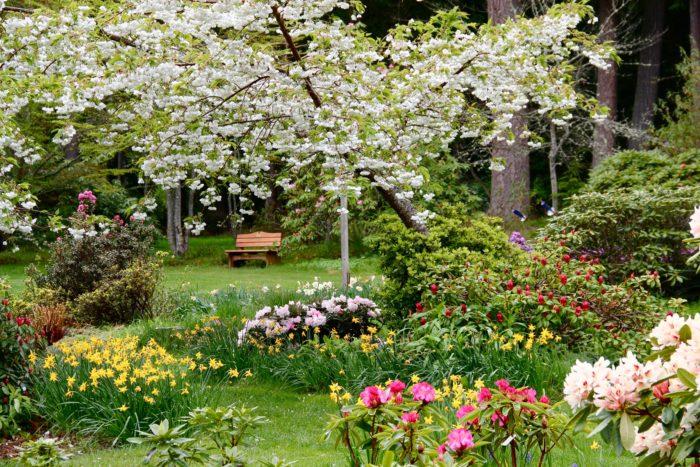 3. Meerkerk Gardens, Whidbey Island