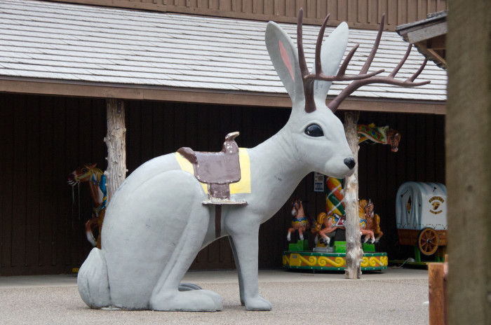 3. They don't have a clue what a Jackalope is.