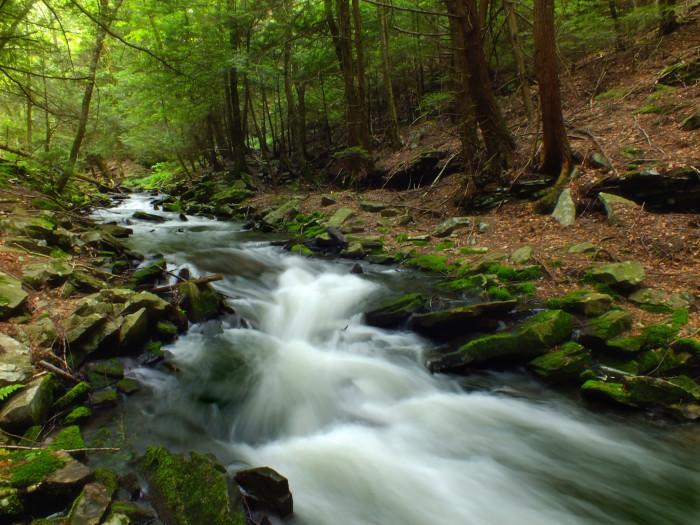 11. McElhattan Creek