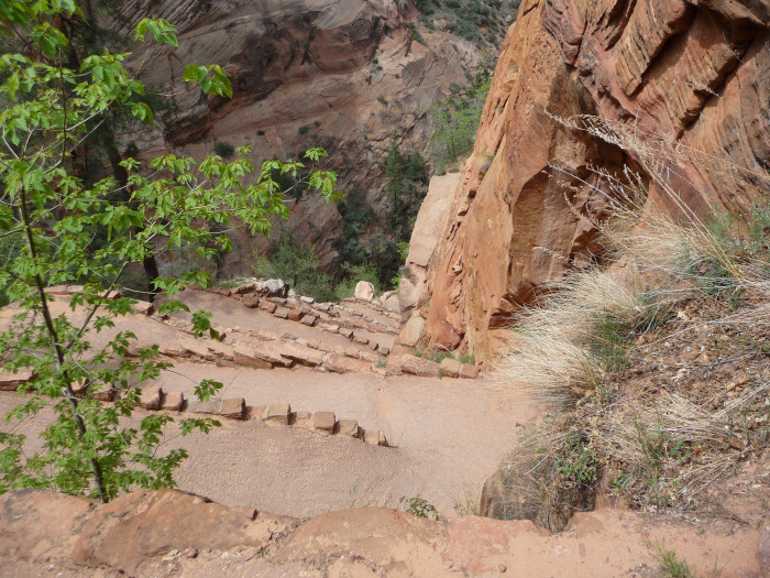 """11. """"Walter's Wiggles,"""" the zig-zag switchbacks on the trail to Angel's Landing, is named for Walter Reusch."""