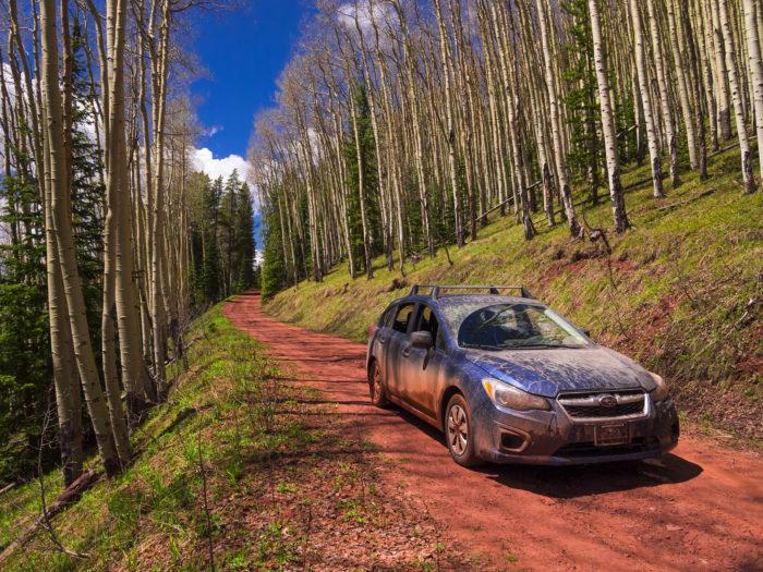 6. We drive Subarus.