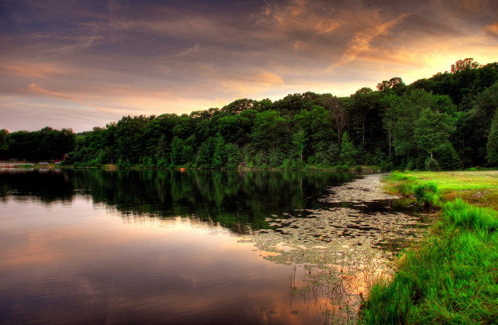 11. Deer Lake Reservoir is separate from the Boy Scouts' sanctuary Deer Lake. The 6-acre pond is breathtaking at sunset.