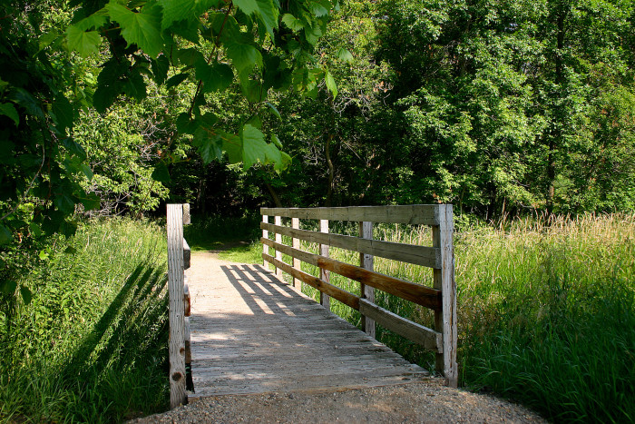 7. Ridgeline Nature Trail