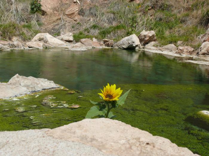 6. Hot Springs