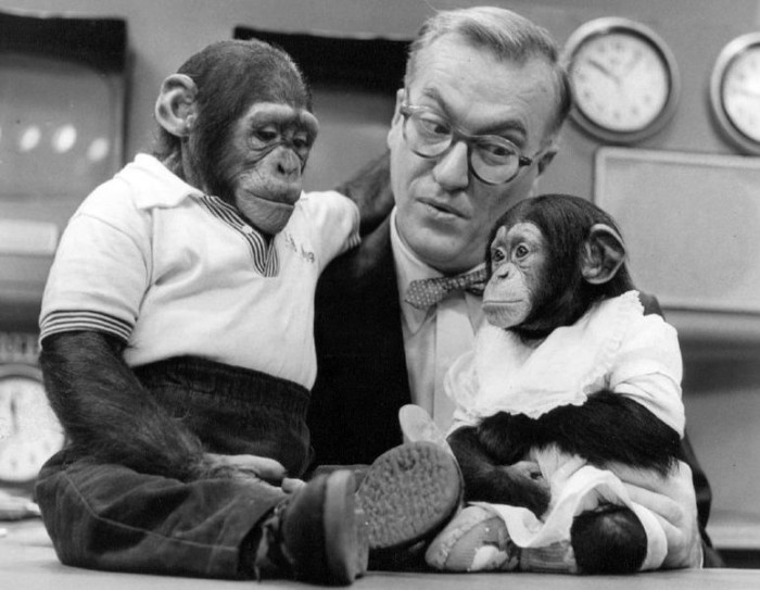 17. Once NBC's mascots, you can see chimpanzees J. Fred Muggs & Phoebe B. Beebe pictured here with Today Show host Dave Garroway in 1954.