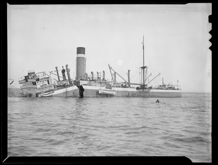 7. In 1938, a freighter ship full of rare and exotic animals (including bears, monkeys, tropical birds and rare venomous snakes) was shipwrecked in Boston's Outer Harbor. The contents of City of Salisbury remain the most expensive cargo ever shipwrecked in the area.
