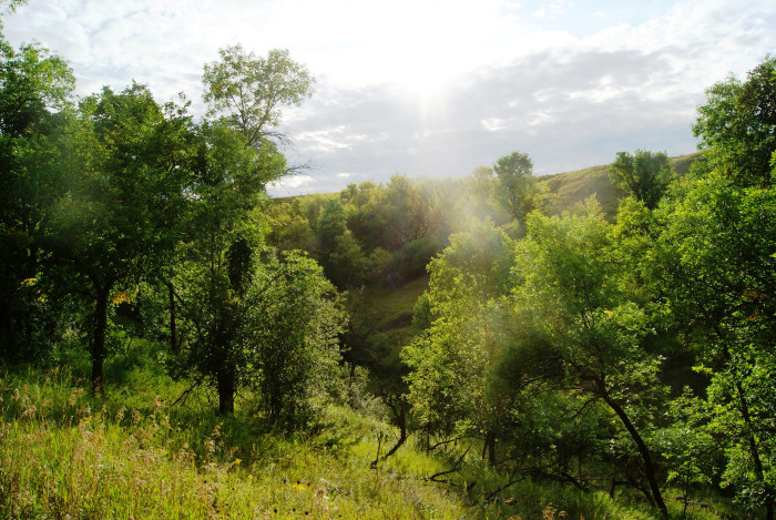 The waterfall is located in the Sheyenne State Forest and can be reached by taking the North Country Trail.