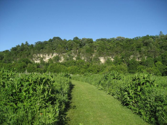Decorah (IA) United States  city pictures gallery : Another spot to visit is the Decorah Community Prairie and Butterfly ...