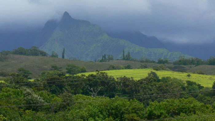 8. Jurassic Park's gates were erected at the base of Mount Wai'ale'ale, and though they were removed after filming, two tall poles still remain on either side of the path.