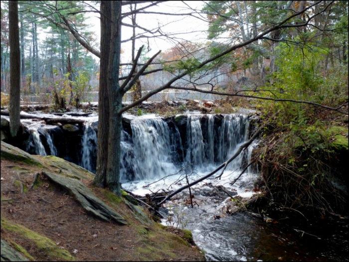 13. Broadmoor Wildlife Sanctuary, Natick. 3 miles.