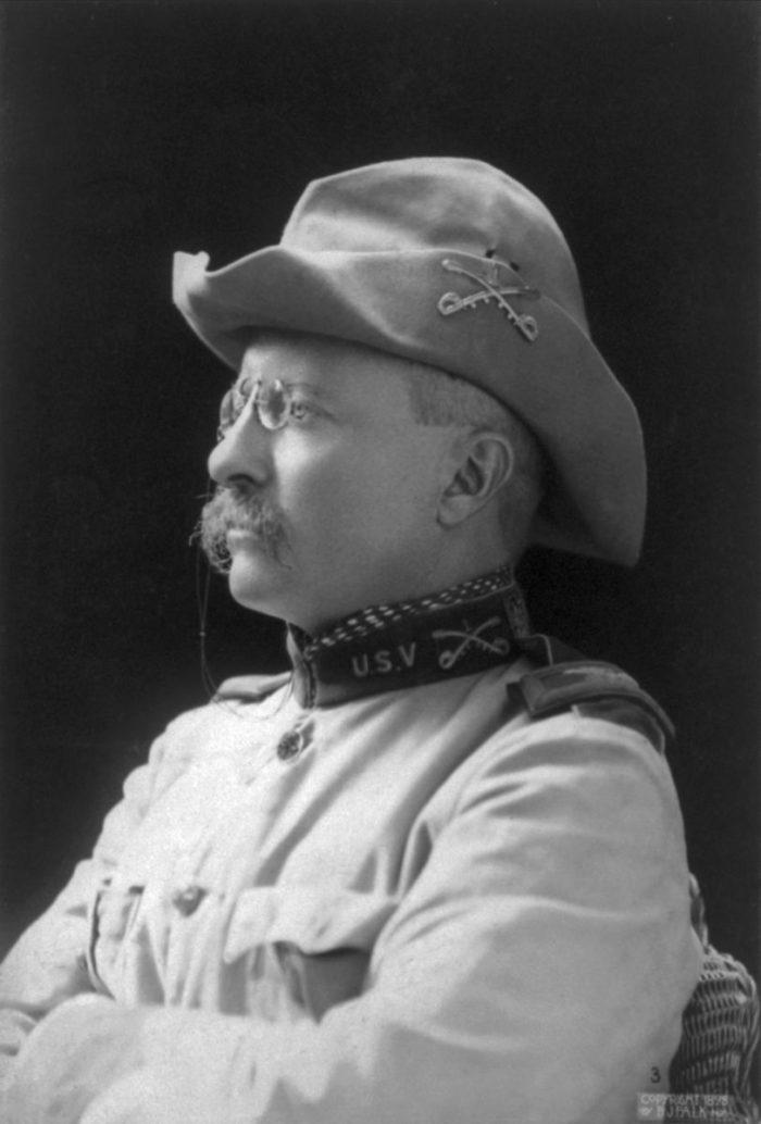 5. Theodore Roosevelt's presidency.