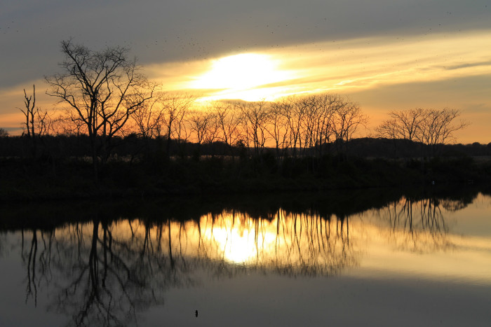 14. This sunset outside of Middletown casts a shadow over the treetops making beautiful mirrored reflections in the water.