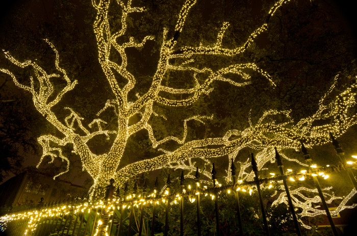 4) Holiday Lights on St. Charles Ave