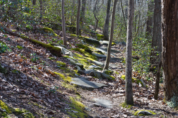 8. Spend a day exploring at a Maryland State Park.