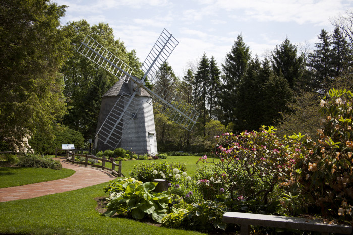 2. This spot by the windmill at Heritage Museum and Gardens in Sandwich is ideal for a peaceful picnic and watching the clouds roll by.