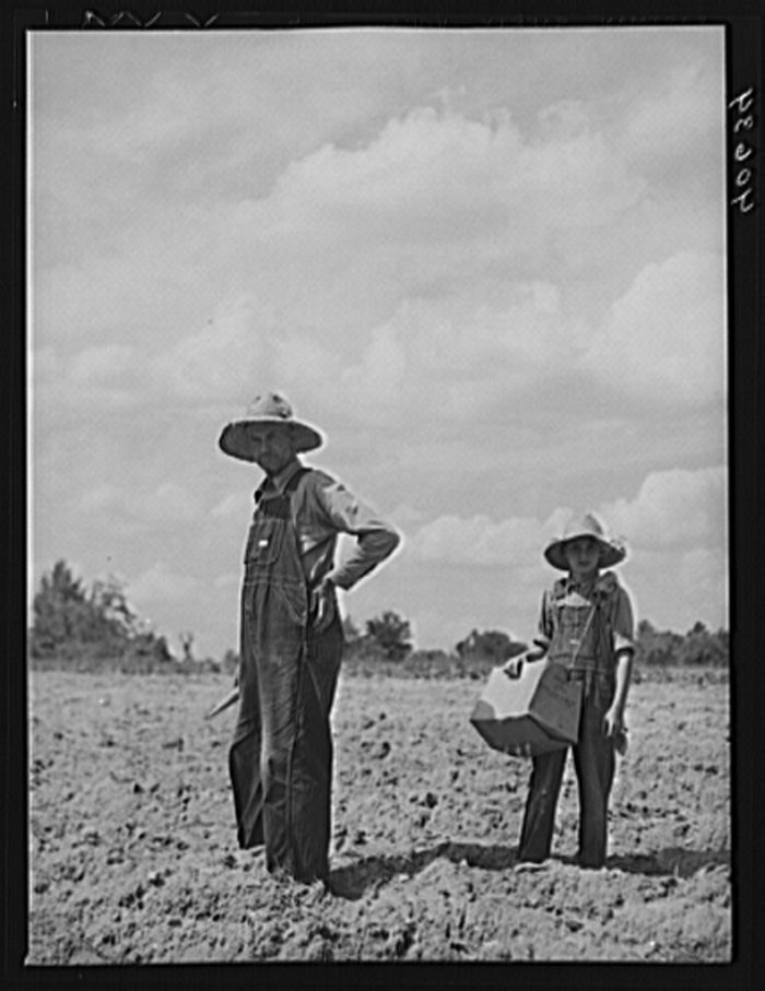 15. A man named Mr. Rigsbee and his son. Tobacco seeds are in the box his son is holding, and Mr. Rigsbee holds the peg. It's safe to say they had a long day of planting ahead of them.
