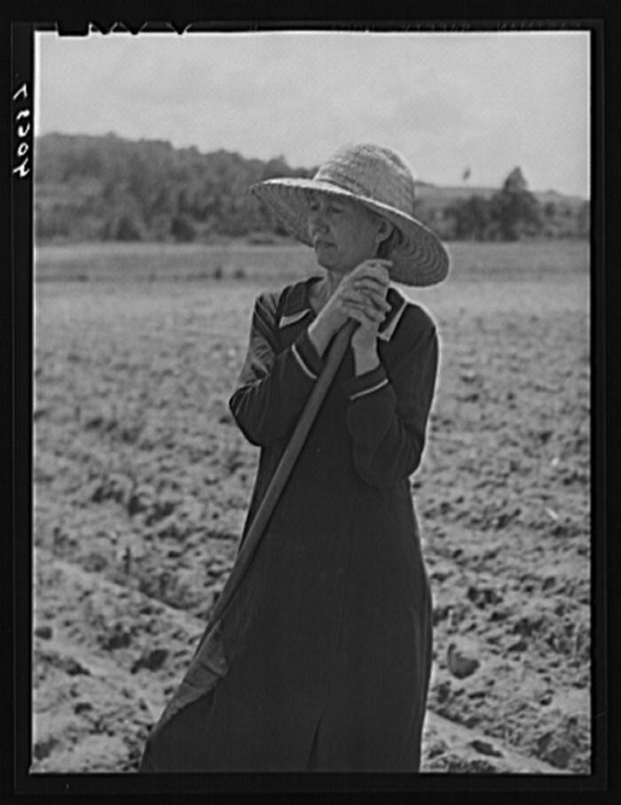 2. Mrs. Jones, the wife of a tenant farmer, looks away as she plows the field, 1940.