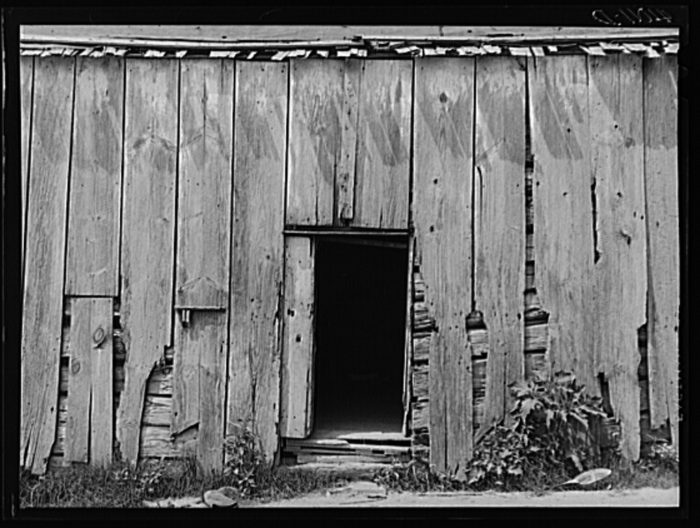 4. A weathered log cabin occupied by a family in St. Inigoes.