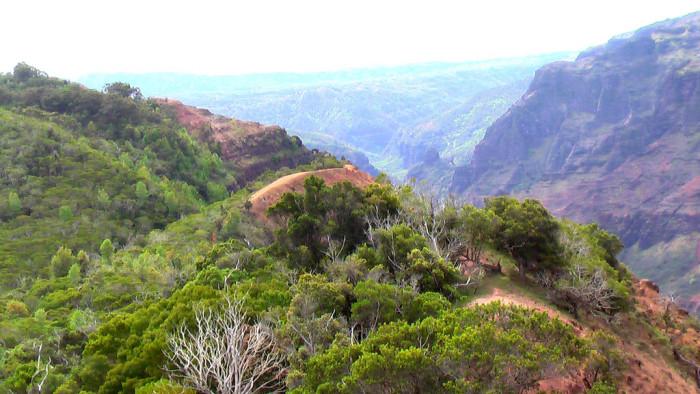 9. Waimea Canyon Trail + Waipo'o Falls