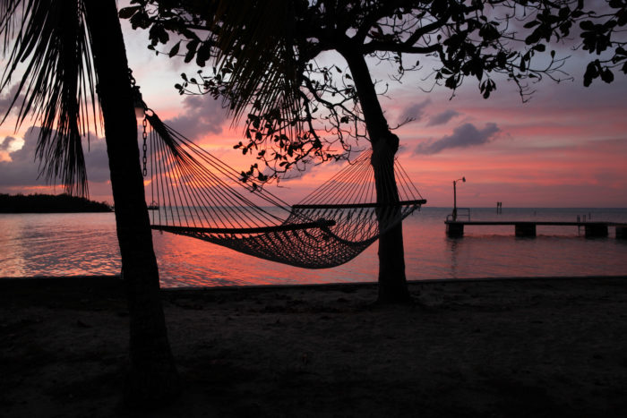 8. ...and a hammock for your backyard.