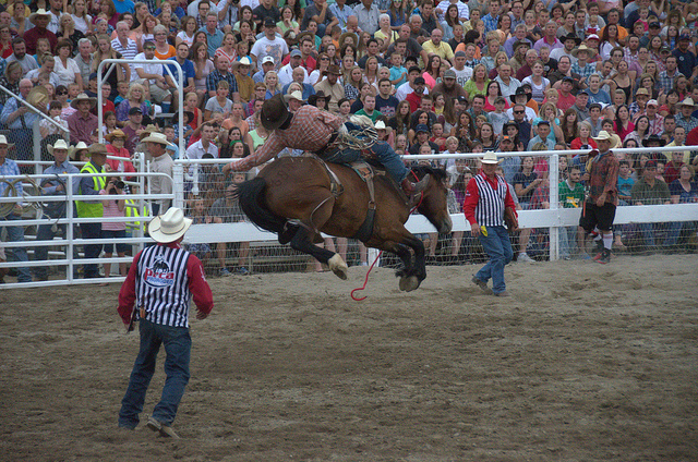 11. Go to a rodeo.