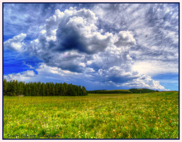 2. I like the sense of freedom that comes with the wide open spaces. Very few states have so much undeveloped land.