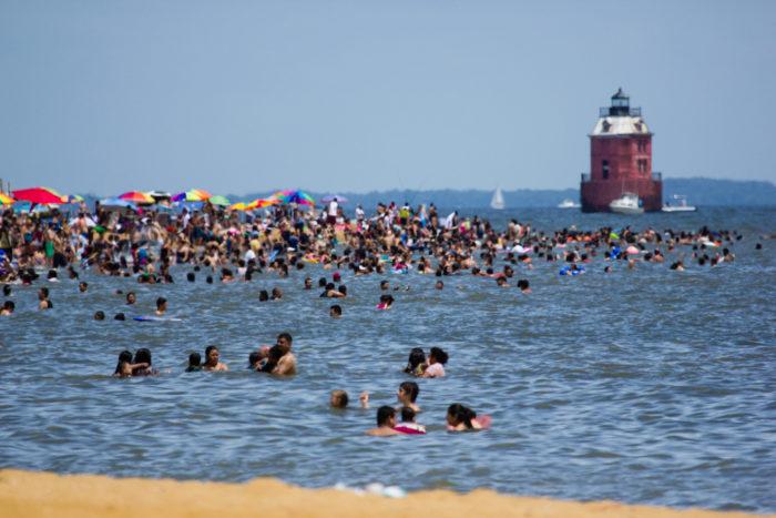2. Take a dip in the Chesapeake Bay.