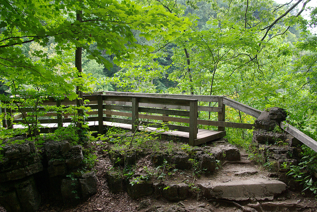 3. Trail 9 - Clifty Falls State Park - 1 mile