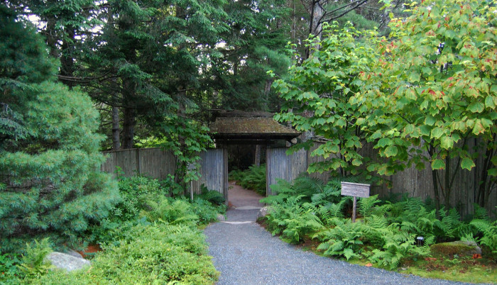 13. The Asticou Azalea Garden is a quiet respite from an, admittedly, already pretty calm place.