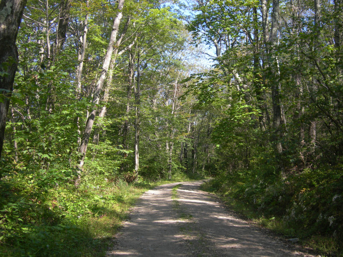 13. Get lost on purpose and explore the back roads of Connecticut as you discover why rural actually means adventure.
