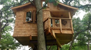 11 Cabins And Treehouses Near Austin You Won't Believe