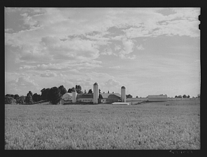 11. A thriving dairy farm in 1940, now a subdivision.