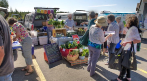 These 7 Incredible Farmers Markets In Alaska Are A Must Visit