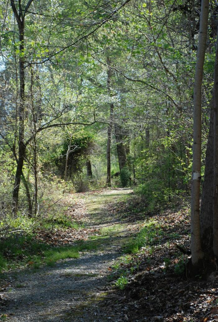 7. Horseshoe Bend Trail - 2.8 Miles