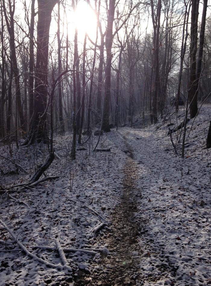3. Monte Sano State Park/Mountain Mist Trail Loop - 3.7 Miles