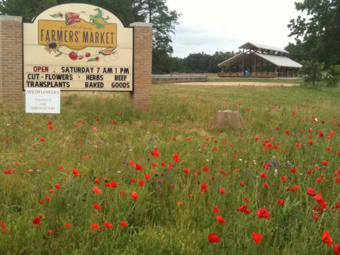 6. ASU Regional Farmers Market (Jonesboro)