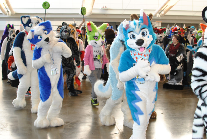 15. We are home to the Number One largest Furry convention