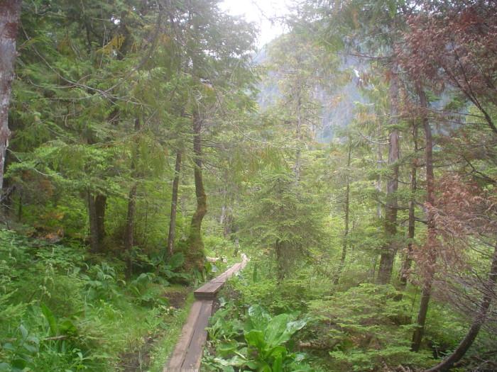 12. Beaver Lake Trail – Sitka