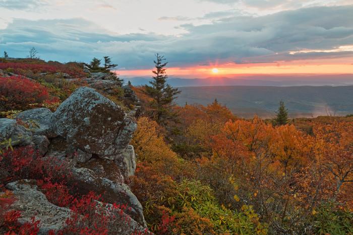 1. Bear Rocks Preserve, Grant and Tucker Counties.