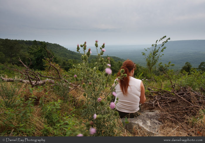 10.Bench Road Trail, Mount Nebo State Park (Dardanelle)