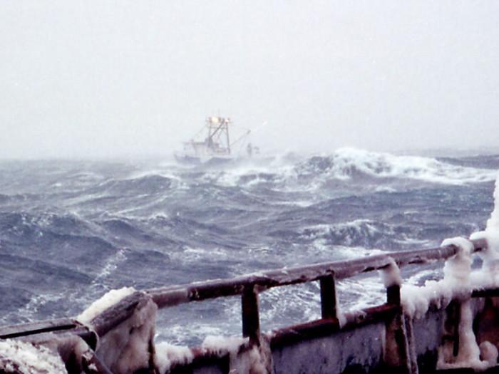 1. Bering Sea