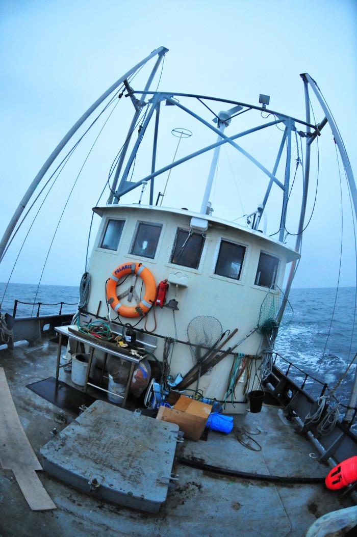 Bering Sea 2 - Flickr - Viewminder