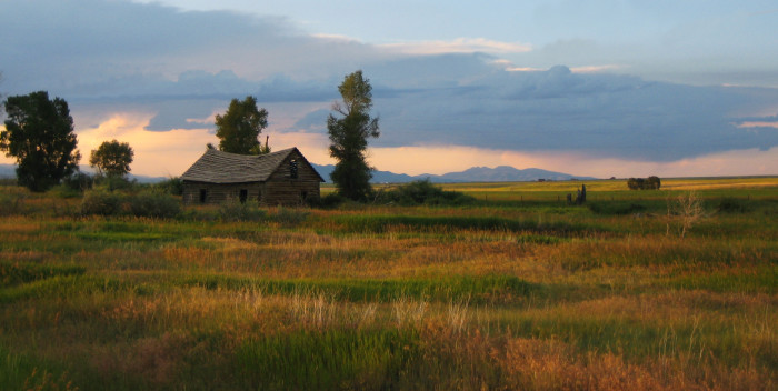2. Blacktail Barn