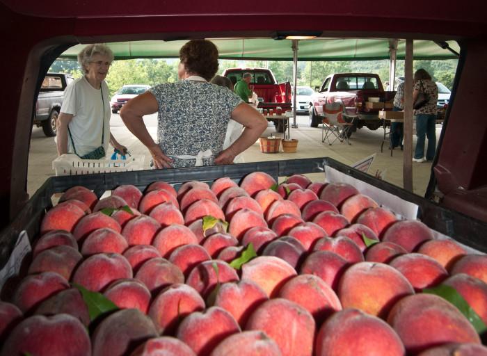 10 Bluegrass Farmers Market