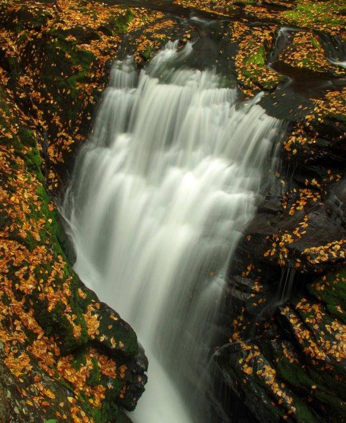 Bushkill Falls Lower Gorge