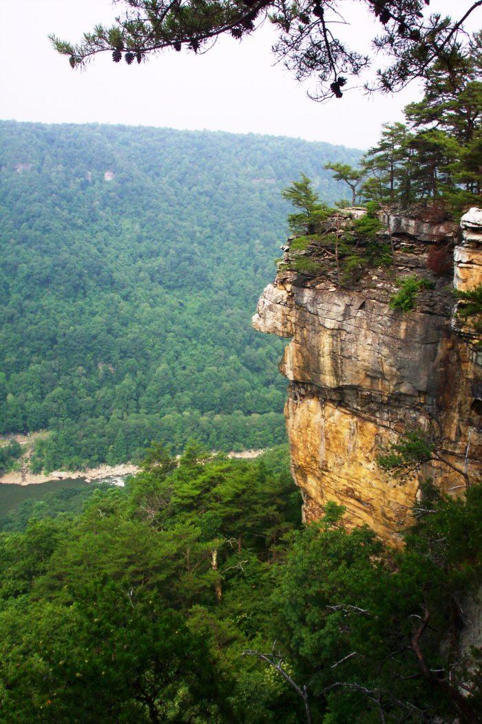 Cliff_New_River_Gorge_WV_USA