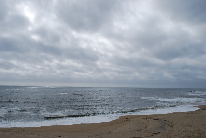 13. Cowell Ranch Beach, Half Moon Bay
